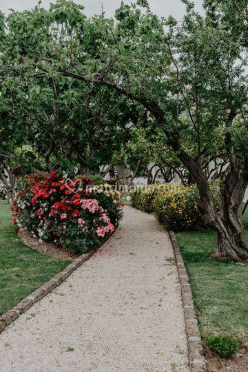 I nostri giardini