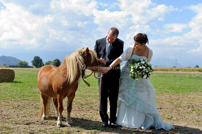 Sposi con il pony