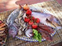 Pescato del giorno