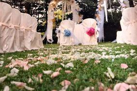 Anche Wedding