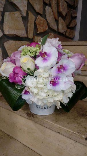 Composizione floreale orchidea
