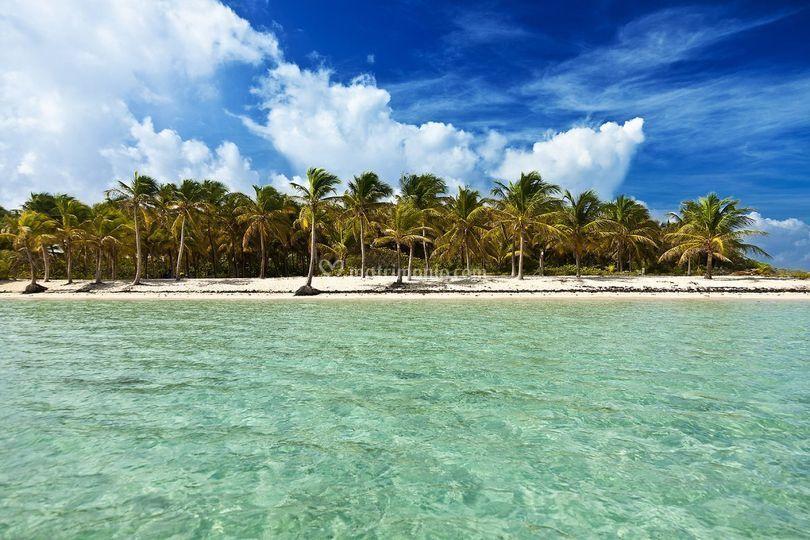 Matrimonio Guadeloupe