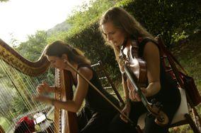 A Sposart Ensemble