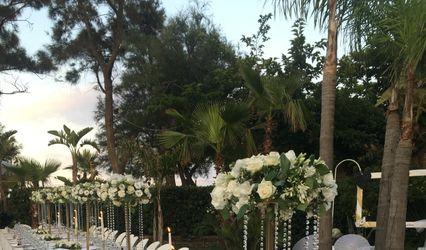 Luxury Wedding Organizer