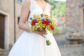 Artemisia Fiori