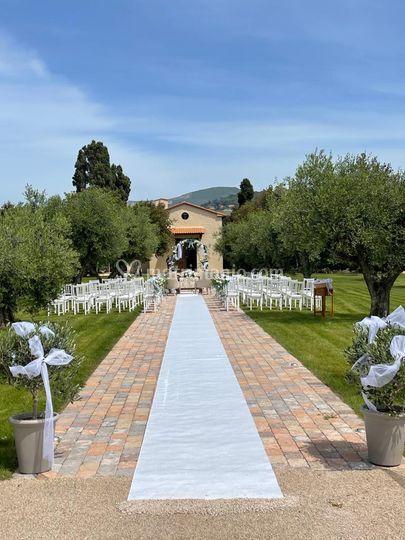 Allestimento in oliveta