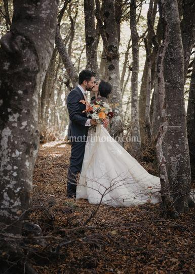 Hexagon for Wedding Photo