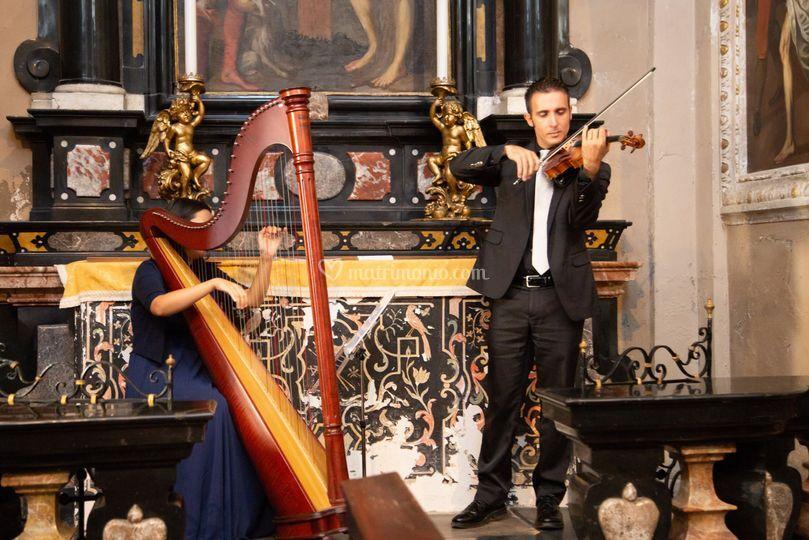 Violino Arpa Celtica