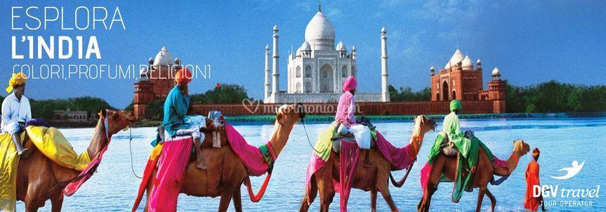 Esplora l'India