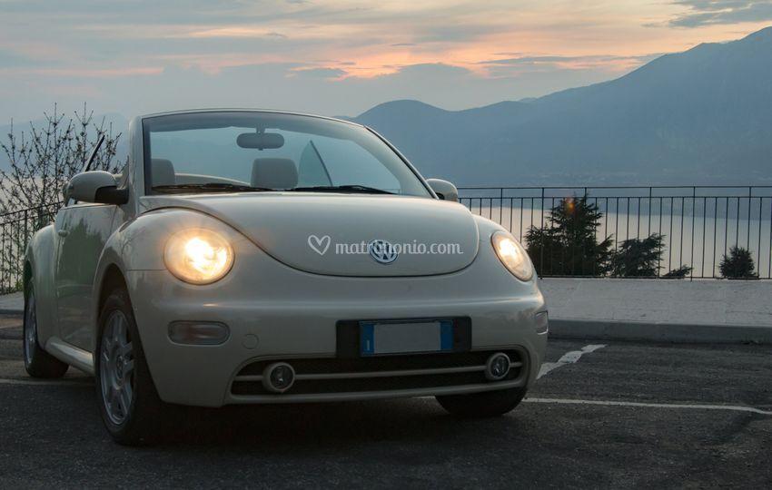 New beetle al tramonto