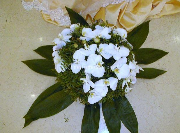Composizione fiori bianchi di vivai piante masciandaro for Vivai piante