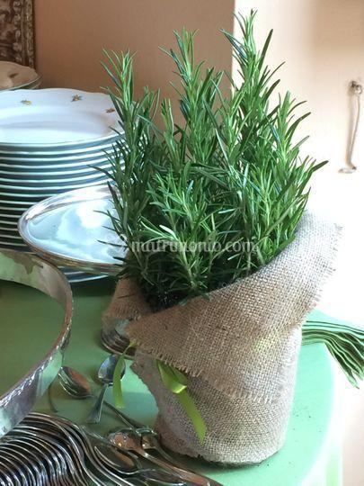 Aromatiche in vaso per buffet