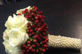 L'Orchidea di Cicioni Carla & Co