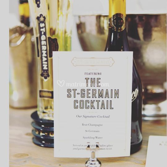 St germain party themed