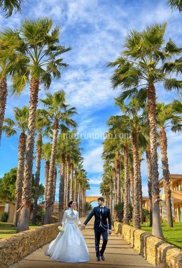 Il viale degli sposi