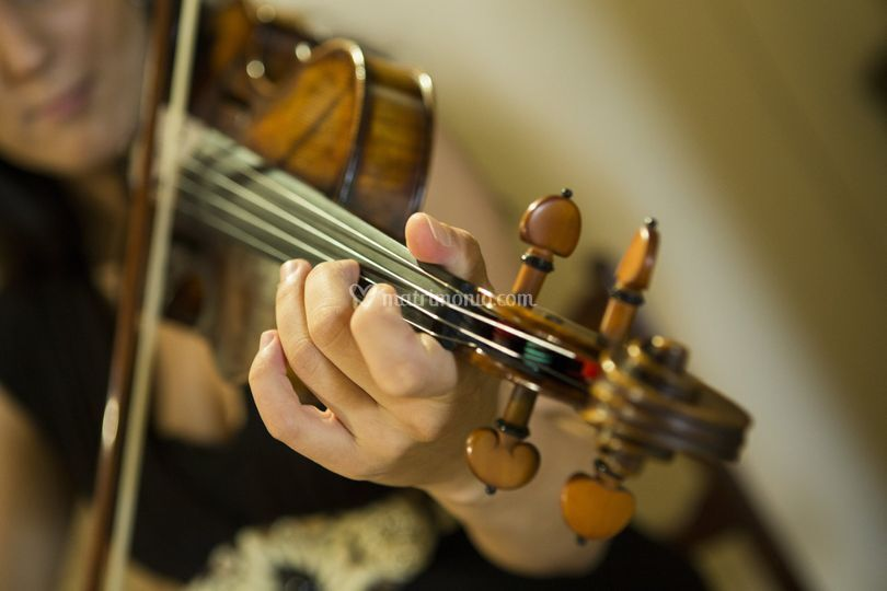 Violino acustico o...