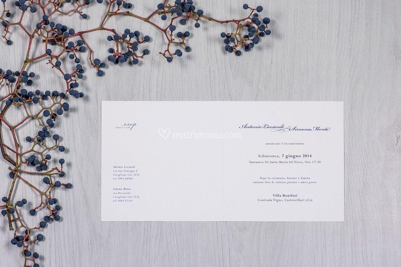 Invito bianco e blu