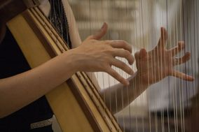 Music Harp Wedding & Events