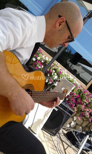 Joey Basilico & The Tomato Band