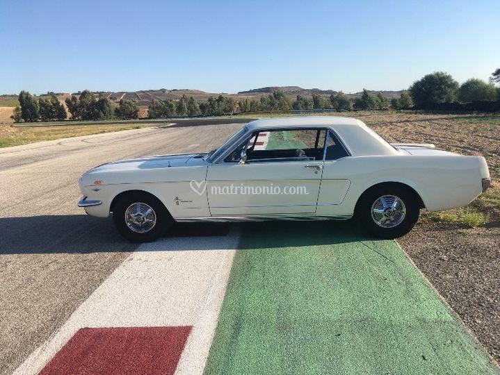 Wedding day - L'auto degli Sposi