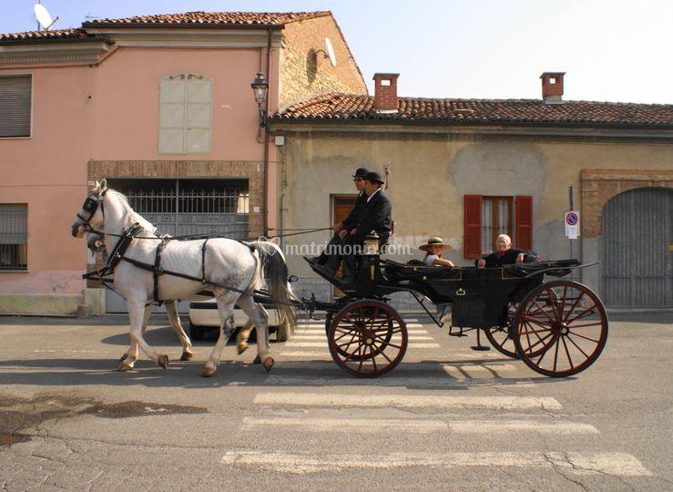 Azienda Agricola Canegallo Carlo