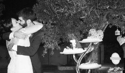 Zebra Wedding 3