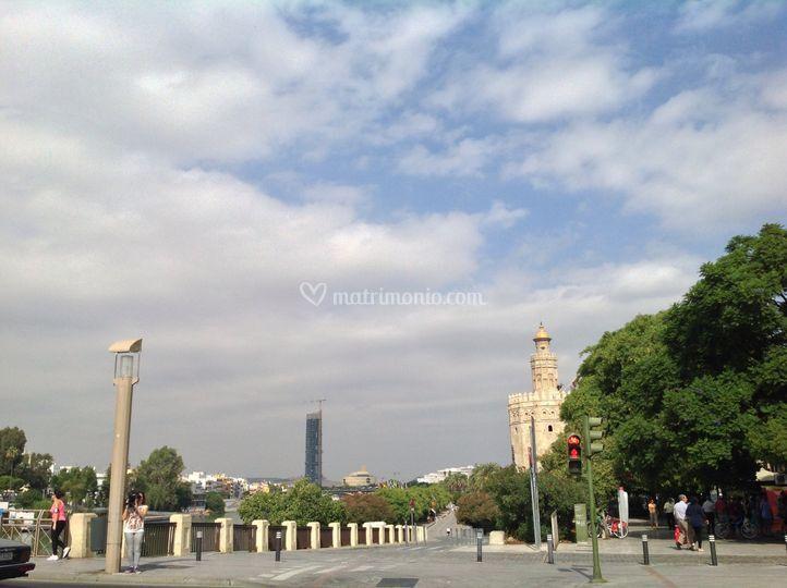 Torre de oro (sevilla )