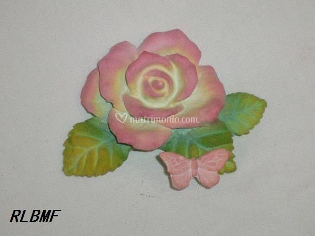 Rosa con farfalla