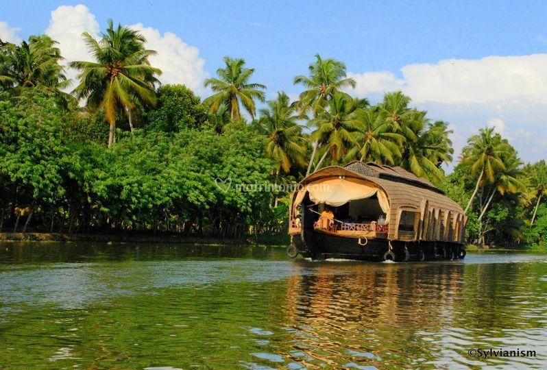 Notti in House Boat in Kerala