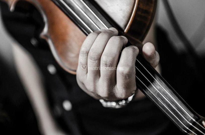 Solo violino