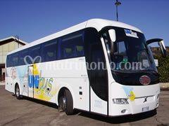Genesis bus