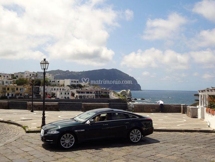 Jaguar - Ischia
