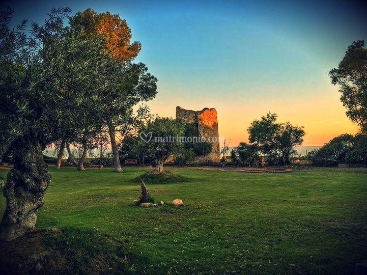 Parco -Ulivi- Torre -Mare
