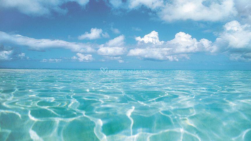 Mare Polinesia