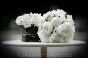 White Tulipa Wedding & Events Planner