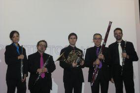 Quintetto all'Opera