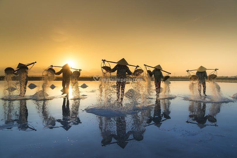 Vietnam raccolta del sale