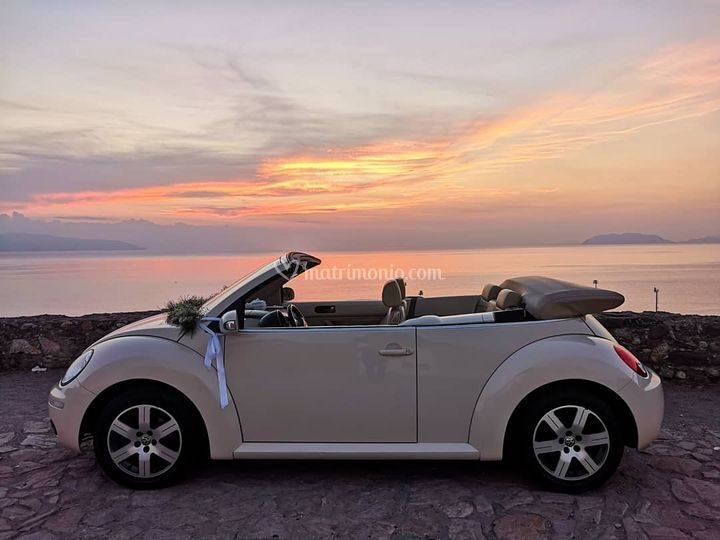 New beetle cabrio beige luna