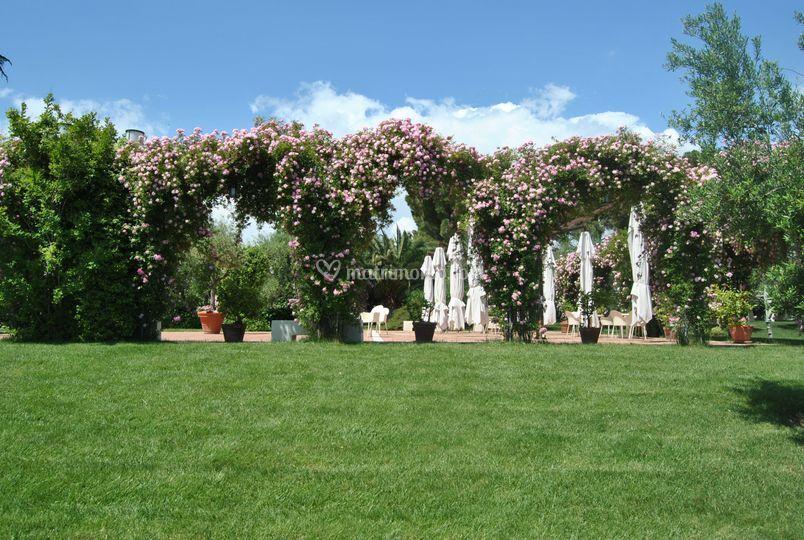 Villa ciccorosella for Giardino fiorito