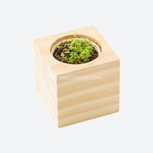 La bomboniera in legno