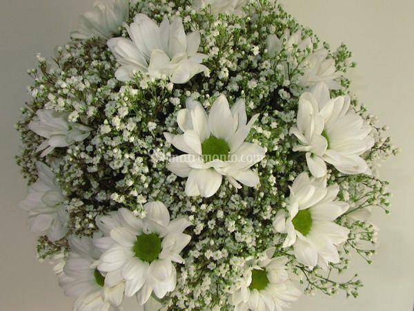 Bouquet sancarlini e nebbia