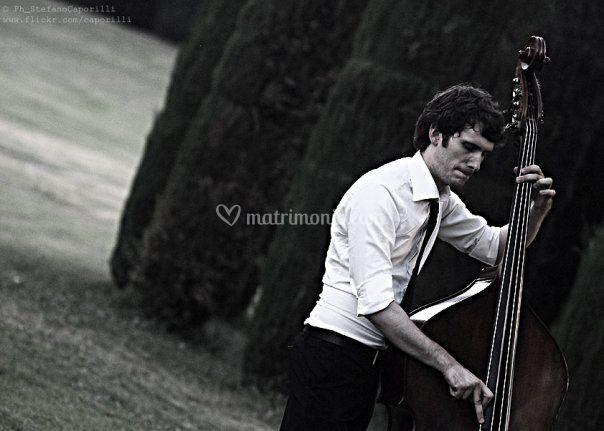 Musicarancio