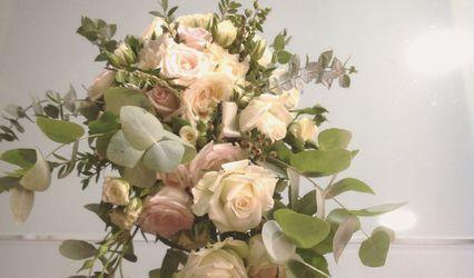 Antonella Stellino Wedding Planner and Events