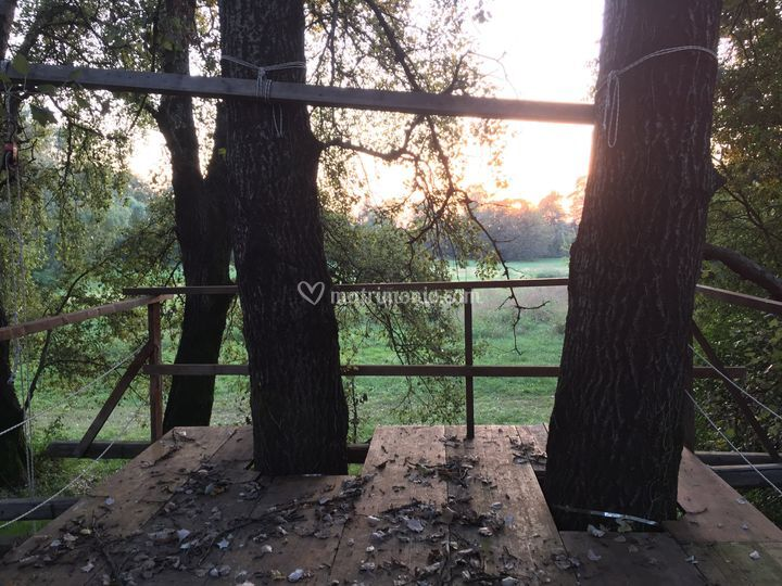 La casetta nell'albero