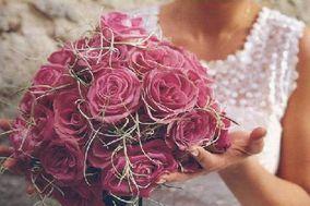 Di Fiore in Fiore di Puccinelli Fosca