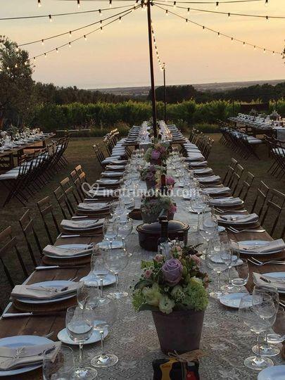 Matrimonio in vigna a Bolgheri