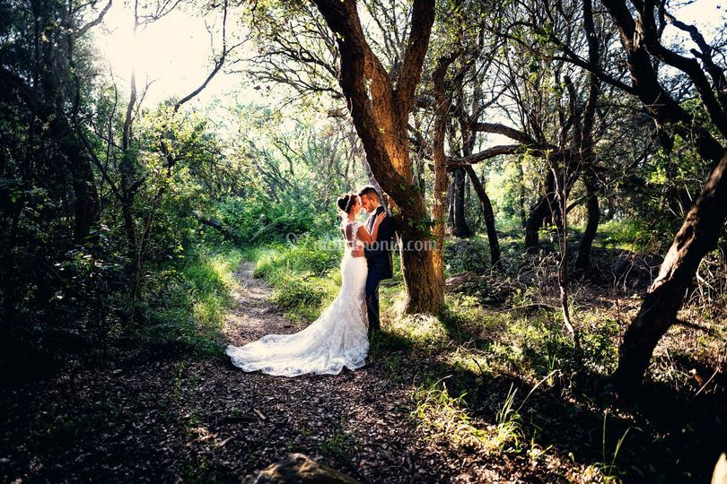 Matrimonio San Felice Circeo
