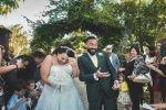 Wedding Emotions