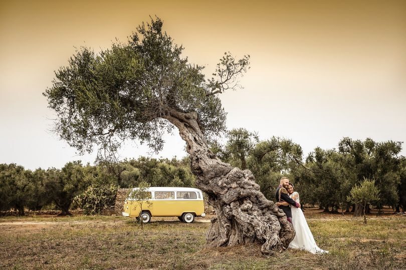 Apulia wedding destination