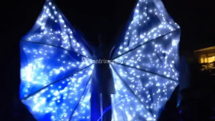 Show Farfalla Luminosa